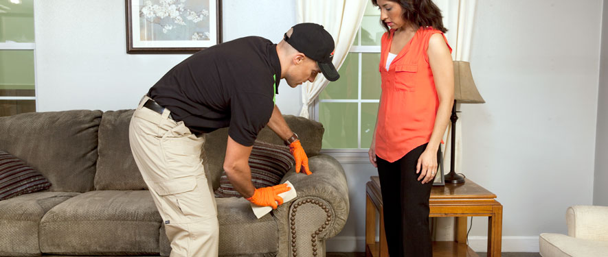 San Bernadino, CA carpet upholstery cleaning